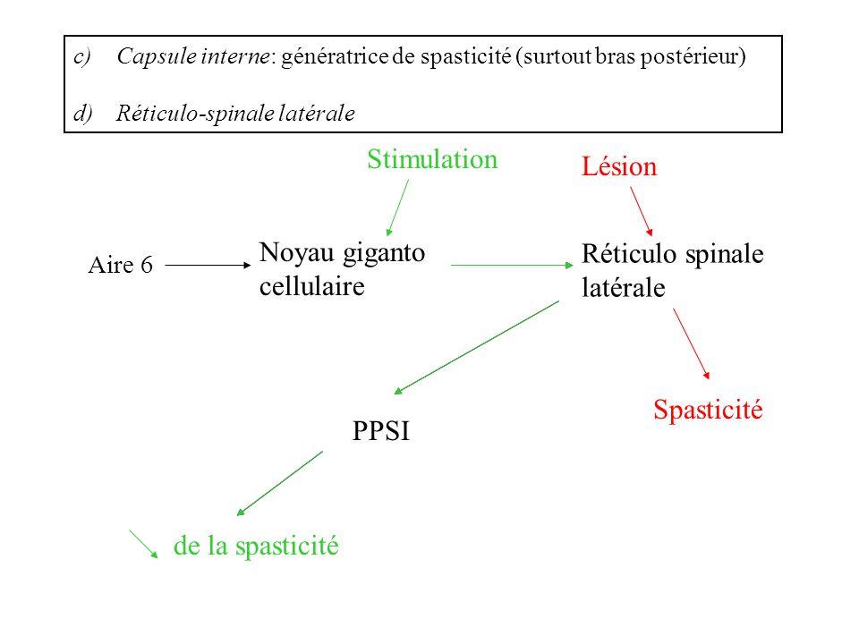 Noyau giganto cellulaire Réticulo spinale latérale