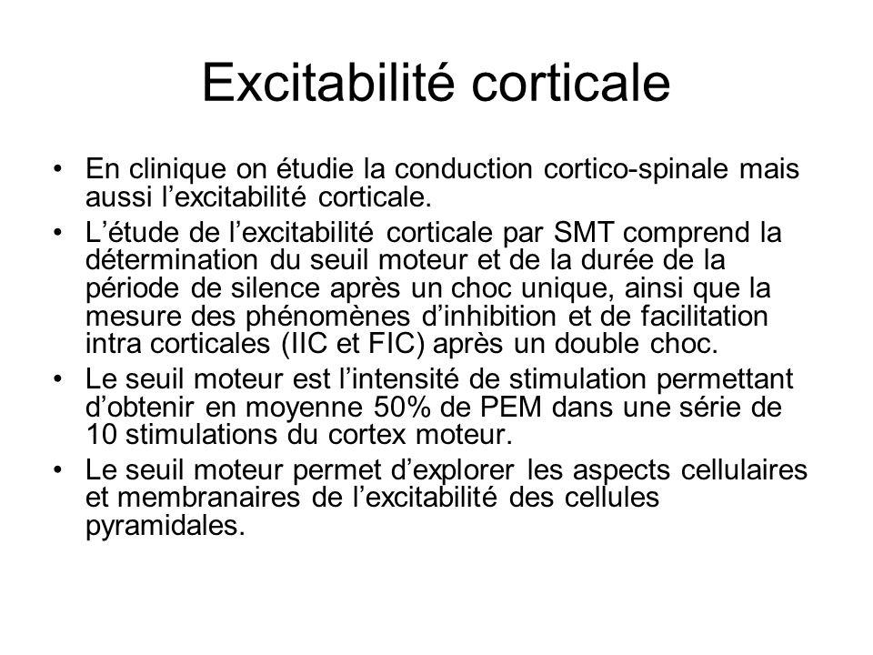Excitabilité corticale