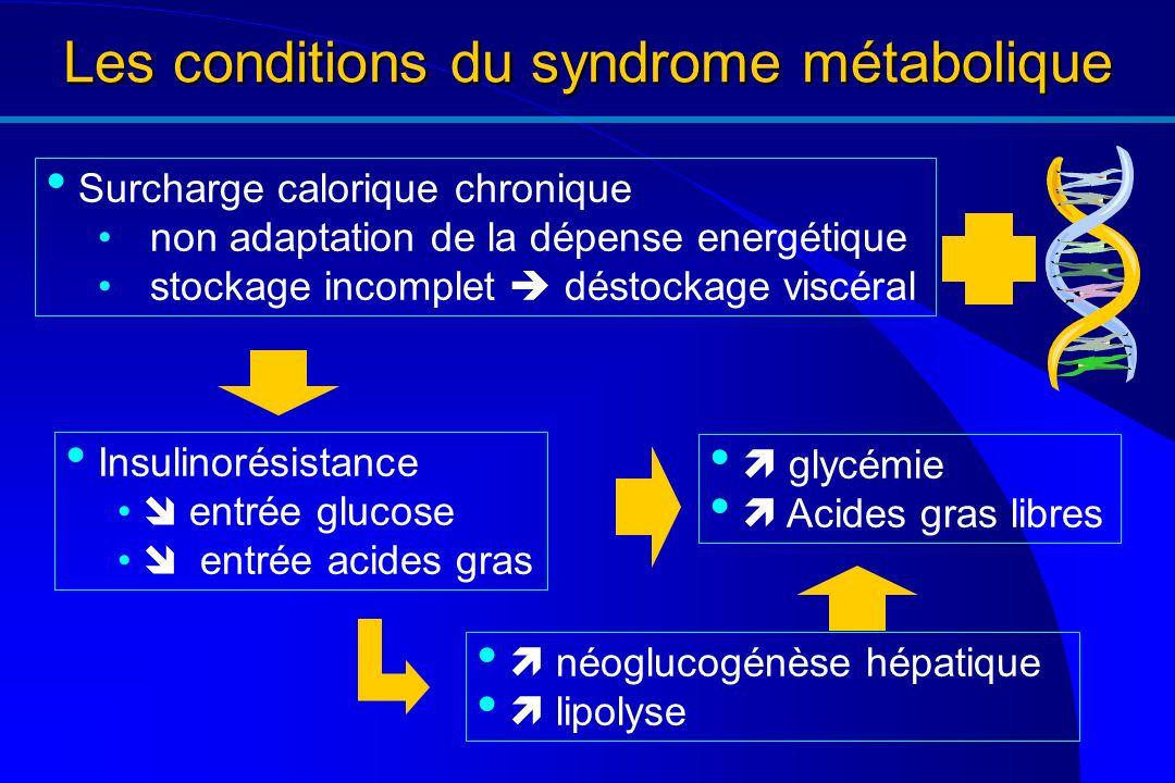 Les conditions du syndrome métabolique