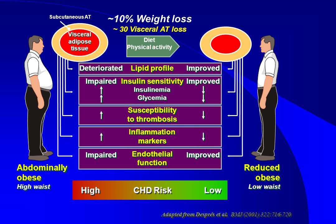 ~10% Weight loss Reduced obese Abdominally obese High CHD Risk Low