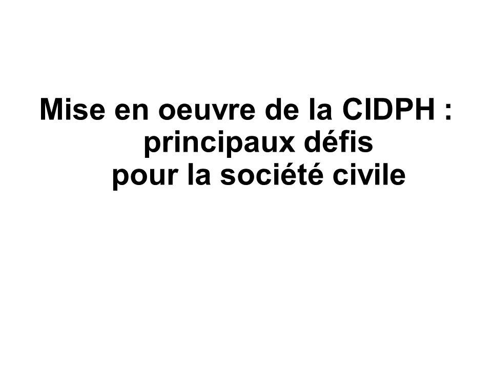 Mise en oeuvre de la CIDPH : principaux défis pour la société civile