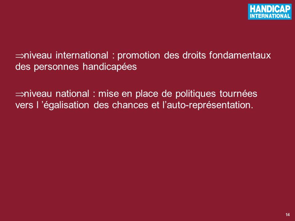 niveau international : promotion des droits fondamentaux des personnes handicapées