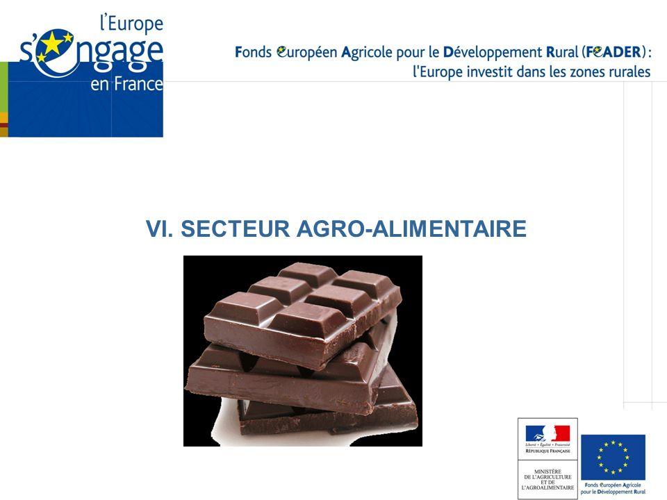 VI. SECTEUR AGRO-ALIMENTAIRE