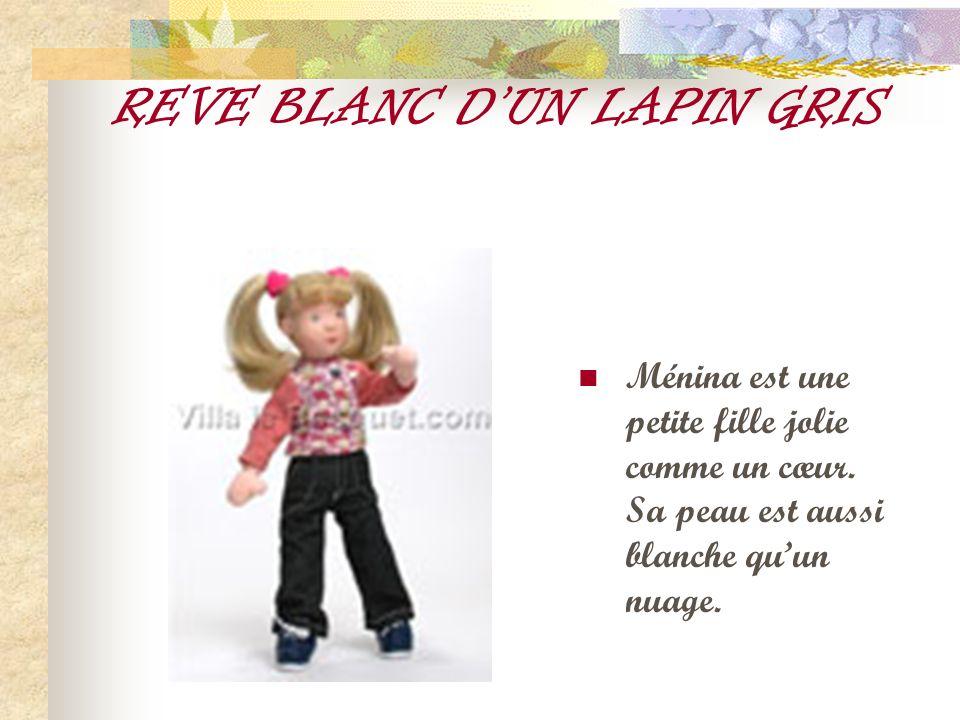 REVE BLANC D'UN LAPIN GRIS