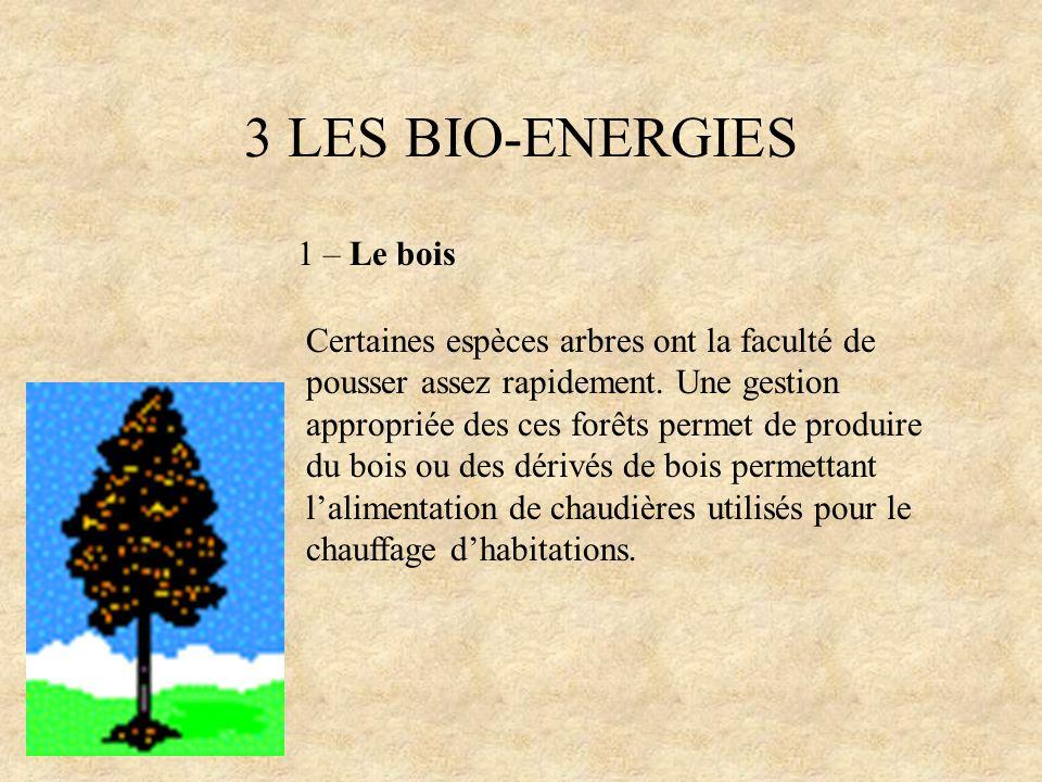 3 LES BIO-ENERGIES 1 – Le bois
