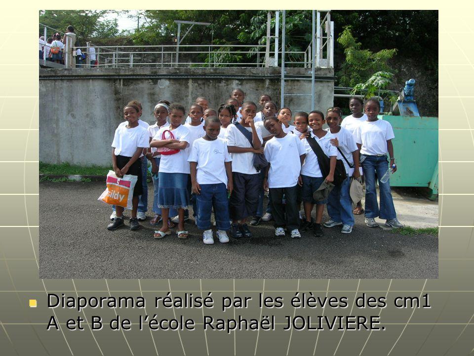 Diaporama réalisé par les élèves des cm1 A et B de l'école Raphaël JOLIVIERE.