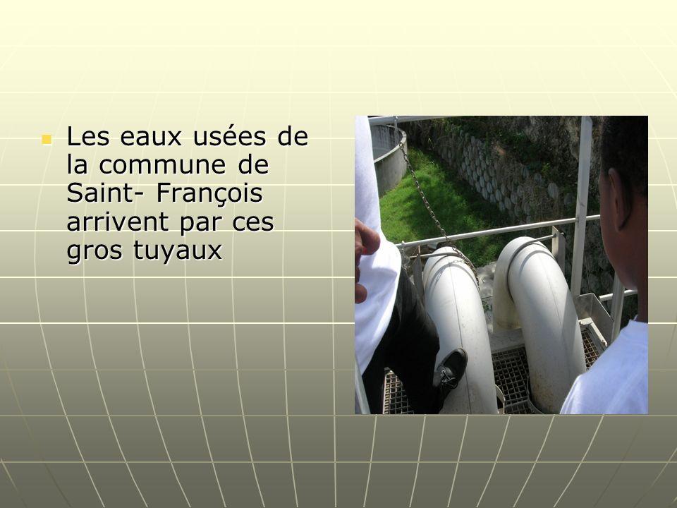 Les eaux usées de la commune de Saint- François arrivent par ces gros tuyaux