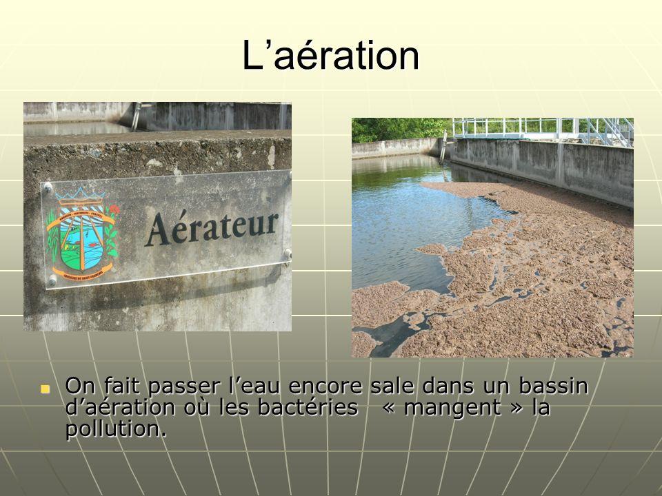 L'aérationOn fait passer l'eau encore sale dans un bassin d'aération où les bactéries « mangent » la pollution.