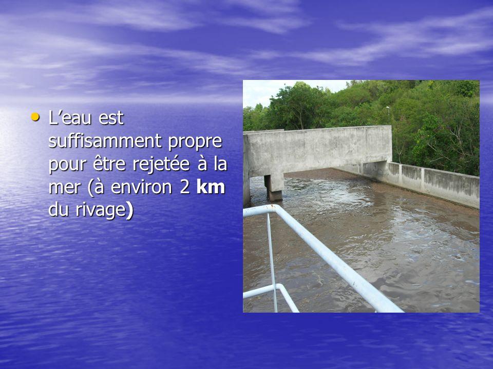 L'eau est suffisamment propre pour être rejetée à la mer (à environ 2 km du rivage)