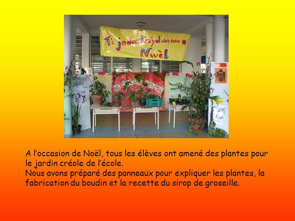 A l'occasion de Noël, tous les élèves ont amené des plantes pour le jardin créole de l'école.