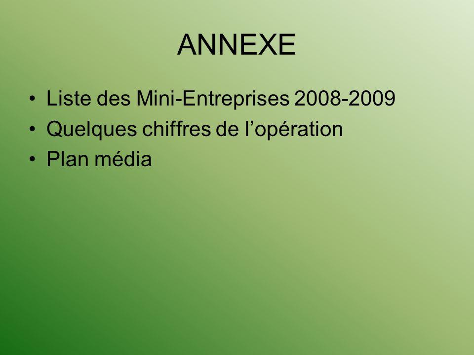 ANNEXE Liste des Mini-Entreprises 2008-2009