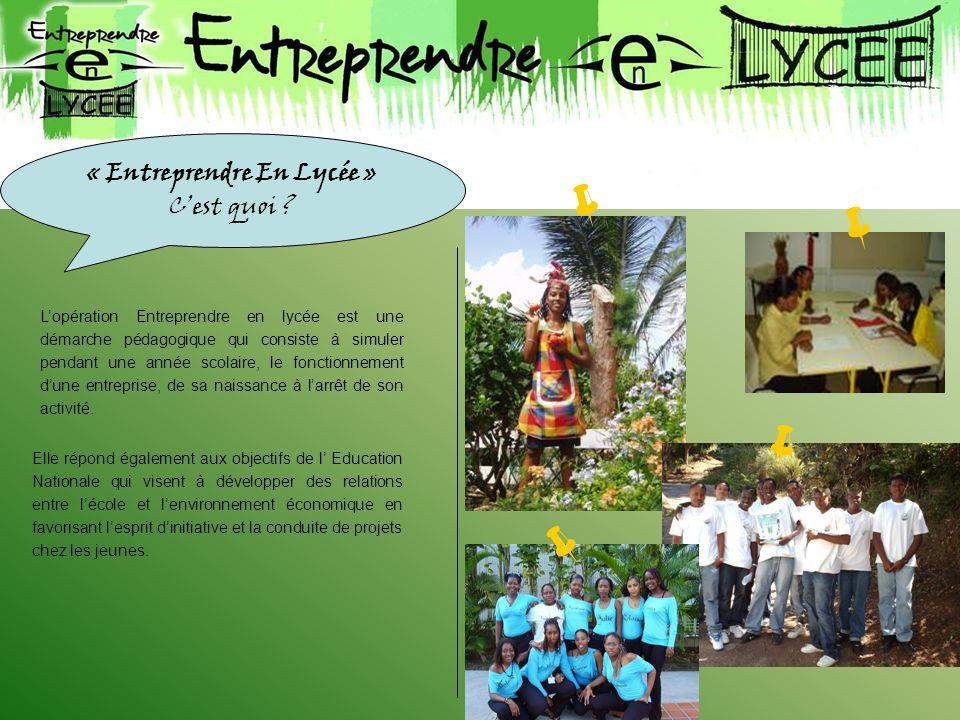 « Entreprendre En Lycée » C'est quoi