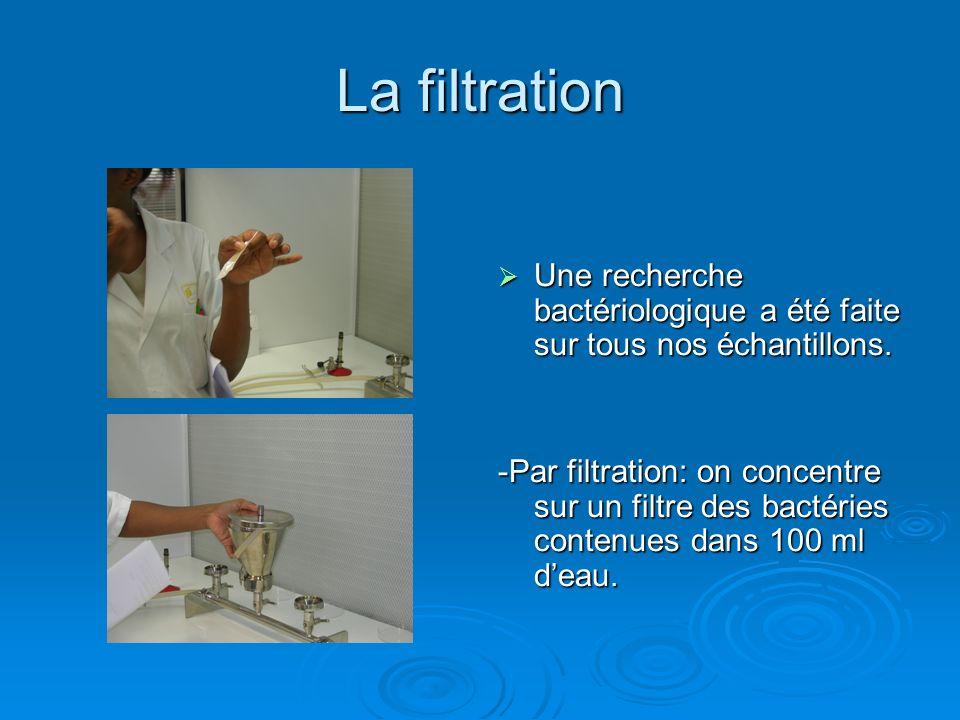 La filtration Une recherche bactériologique a été faite sur tous nos échantillons.