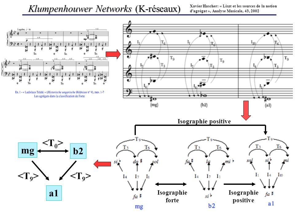 Klumpenhouwer Networks (K-réseaux)