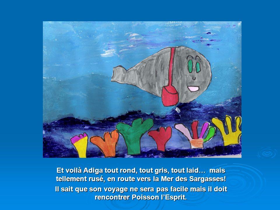 Et voilà Adiga tout rond, tout gris, tout laid… mais tellement rusé, en route vers la Mer des Sargasses!