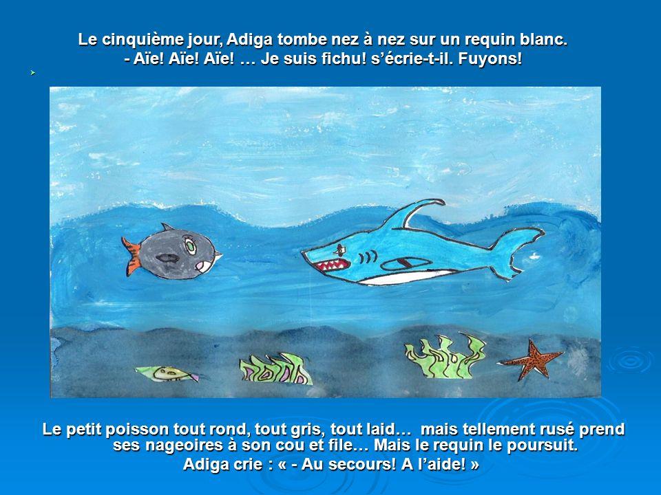 Le cinquième jour, Adiga tombe nez à nez sur un requin blanc.