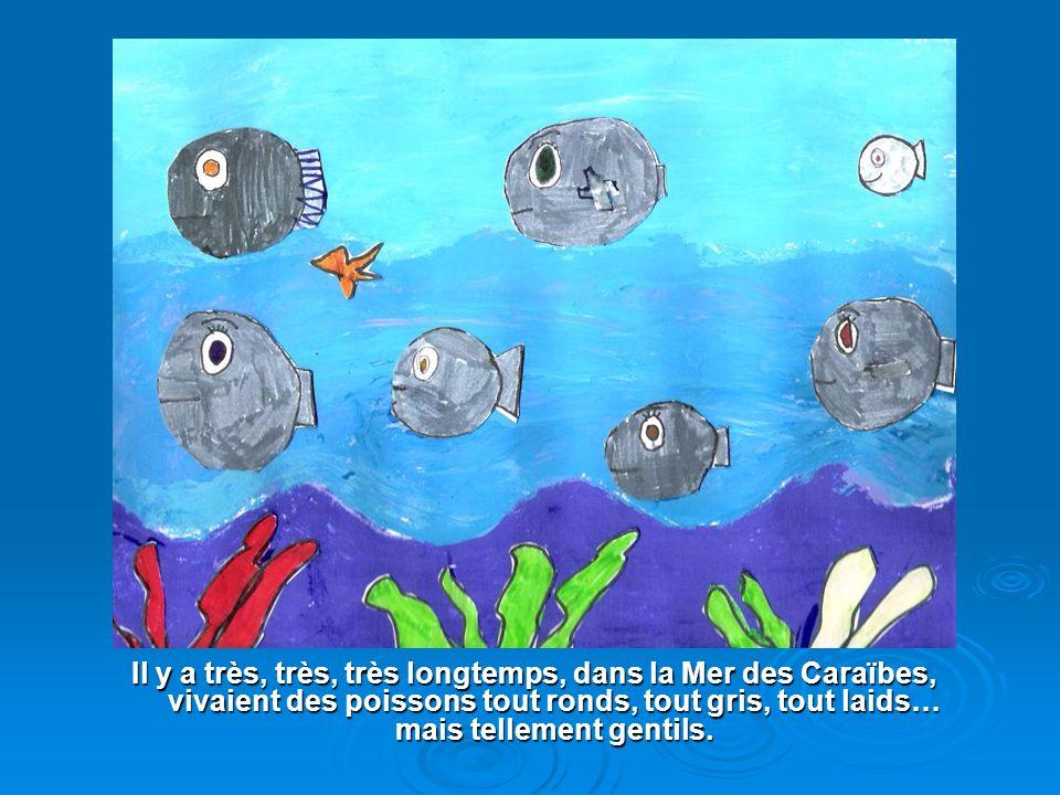 Il y a très, très, très longtemps, dans la Mer des Caraïbes, vivaient des poissons tout ronds, tout gris, tout laids… mais tellement gentils.
