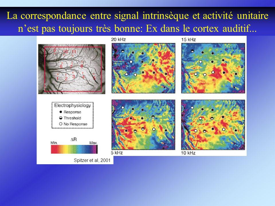 La correspondance entre signal intrinsèque et activité unitaire n'est pas toujours très bonne: Ex dans le cortex auditif...