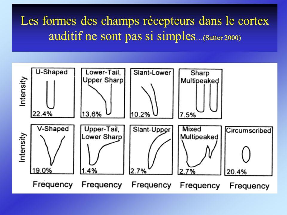 Les formes des champs récepteurs dans le cortex auditif ne sont pas si simples…(Sutter 2000)