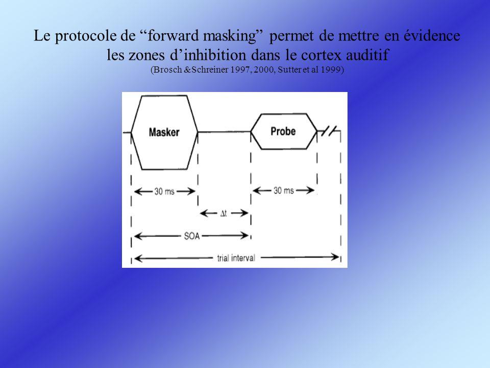 Le protocole de forward masking permet de mettre en évidence les zones d'inhibition dans le cortex auditif (Brosch &Schreiner 1997, 2000, Sutter et al 1999)