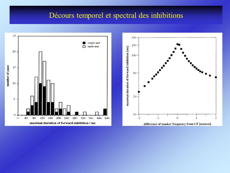 Décours temporel et spectral des inhibitions