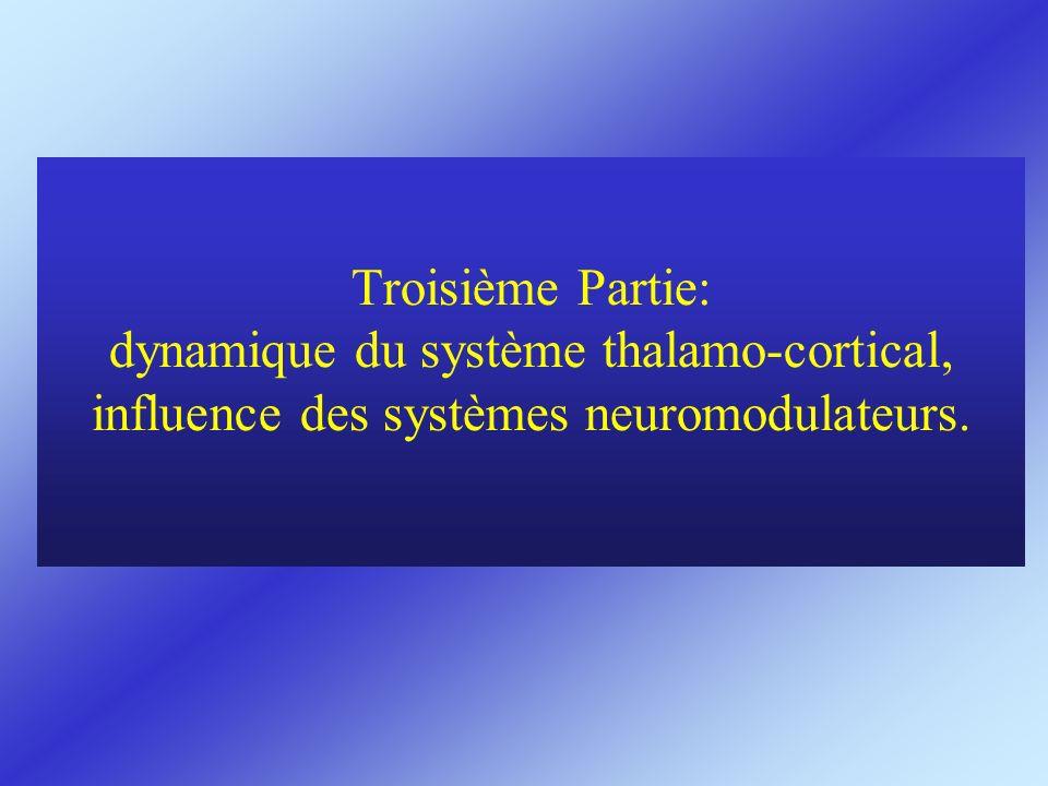 Troisième Partie: dynamique du système thalamo-cortical, influence des systèmes neuromodulateurs.