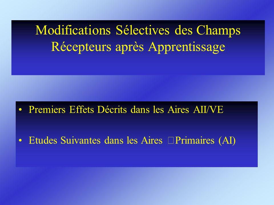 Modifications Sélectives des Champs Récepteurs après Apprentissage