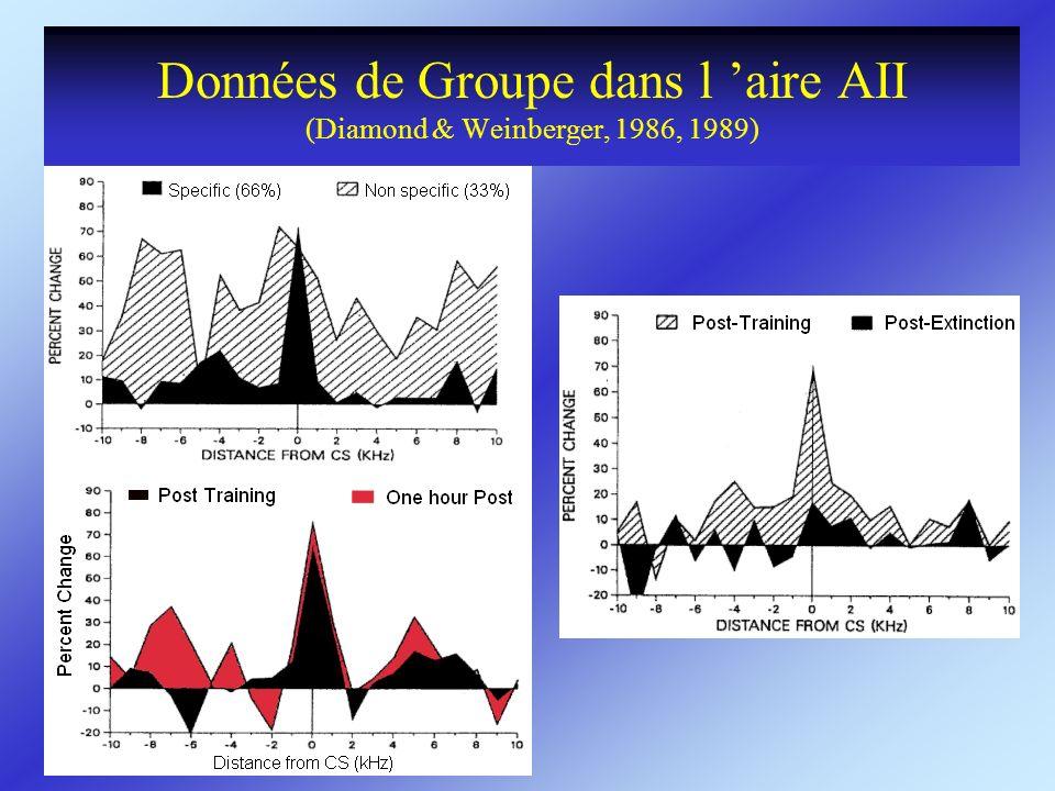 Données de Groupe dans l 'aire AII (Diamond & Weinberger, 1986, 1989)