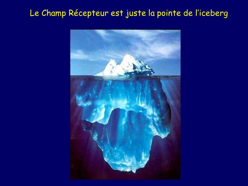 Le Champ Récepteur est juste la pointe de l'iceberg