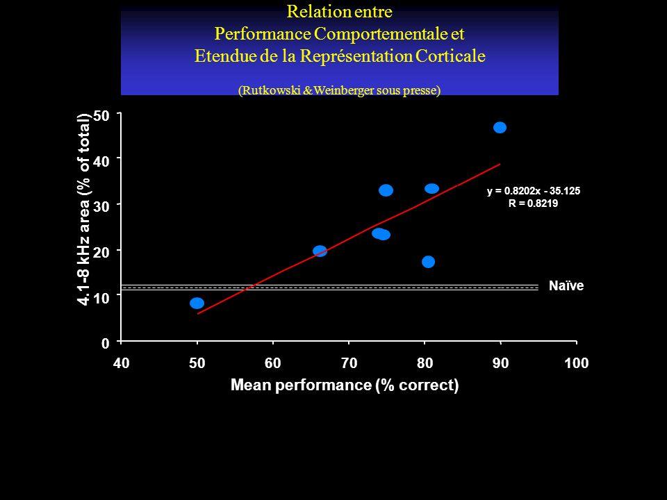 Relation entre Performance Comportementale et Etendue de la Représentation Corticale (Rutkowski &Weinberger sous presse)