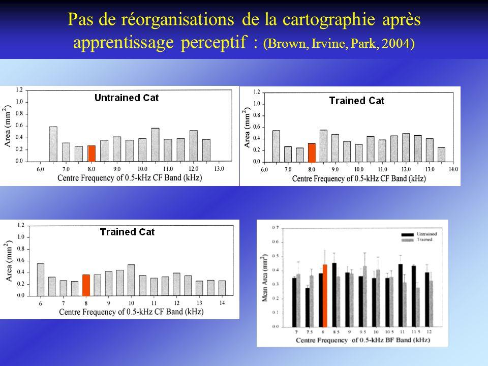 Pas de réorganisations de la cartographie après apprentissage perceptif : (Brown, Irvine, Park, 2004)