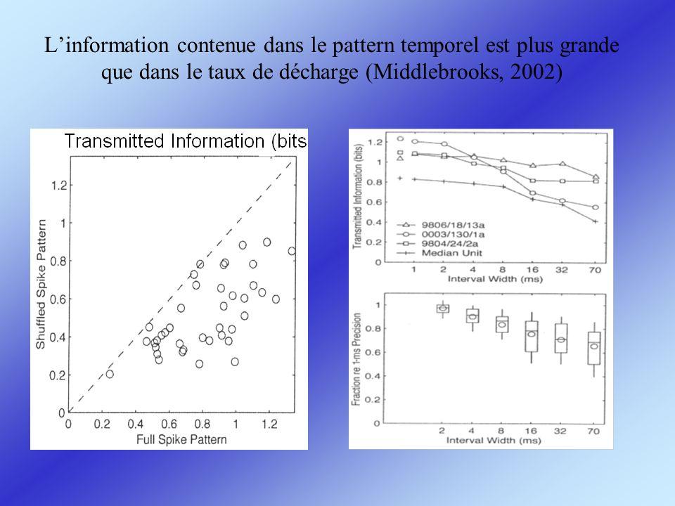 L'information contenue dans le pattern temporel est plus grande que dans le taux de décharge (Middlebrooks, 2002)