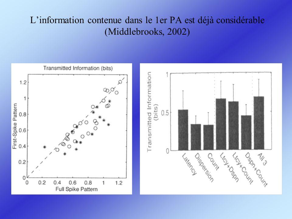 L'information contenue dans le 1er PA est déjà considérable (Middlebrooks, 2002)