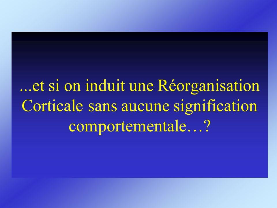 ...et si on induit une Réorganisation Corticale sans aucune signification comportementale…