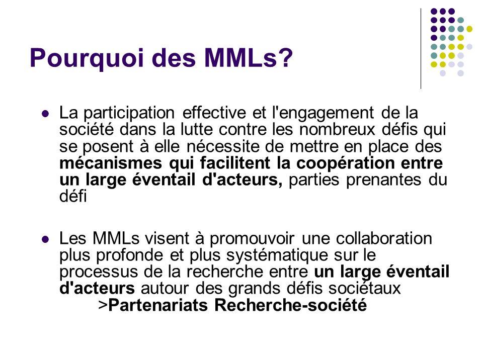 Pourquoi des MMLs