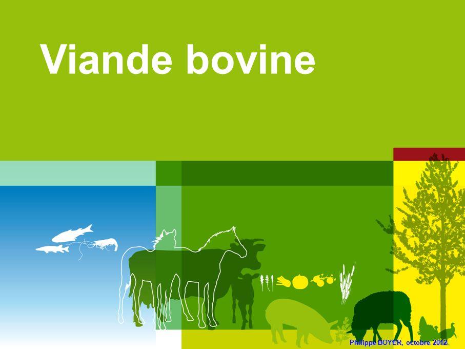 Viande bovine Philippe BOYER, octobre 2012