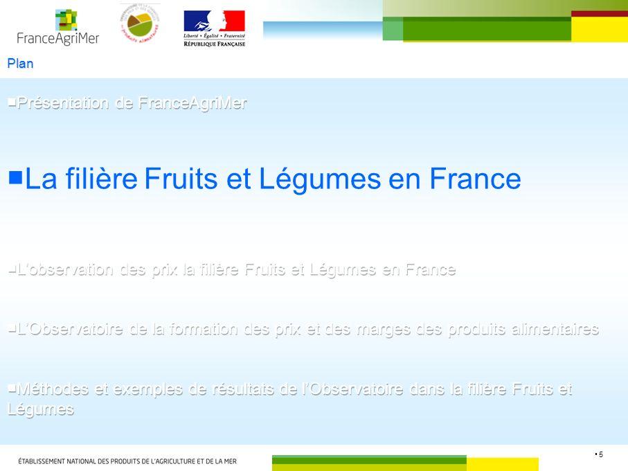 ■La filière Fruits et Légumes en France