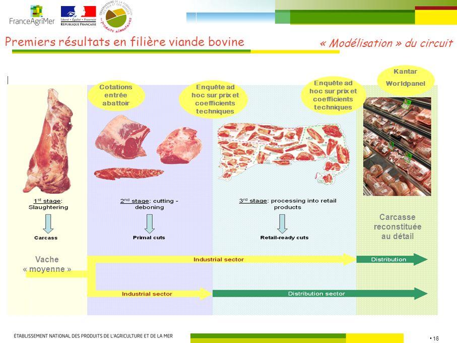 Premiers résultats en filière viande bovine