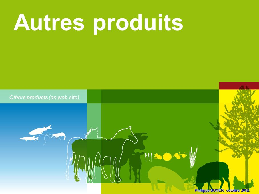 Autres produits Others products (on web site) 24