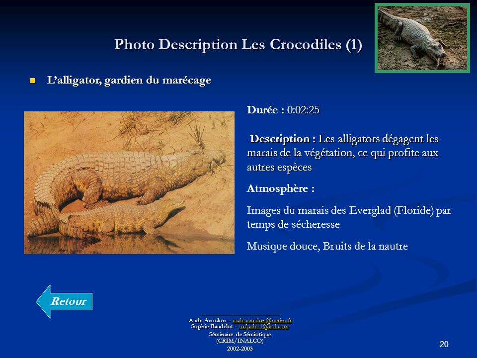Photo Description Les Crocodiles (1)