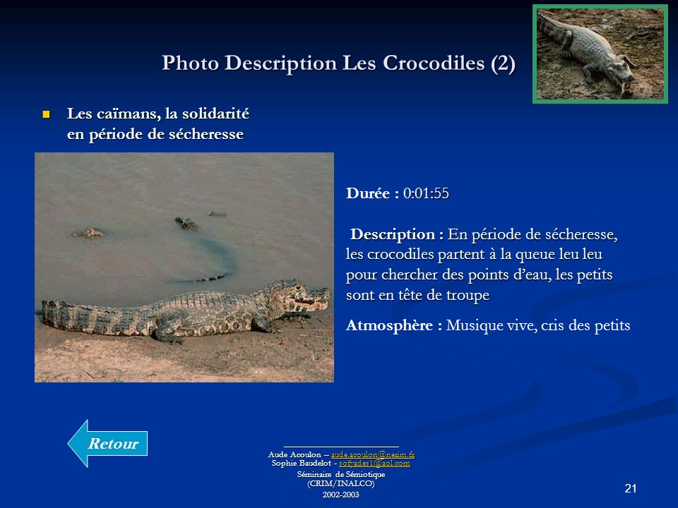 Photo Description Les Crocodiles (2)