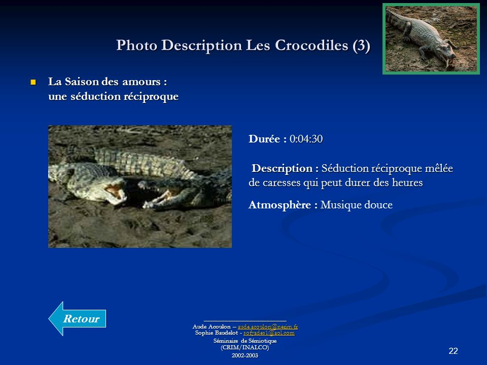 Photo Description Les Crocodiles (3)