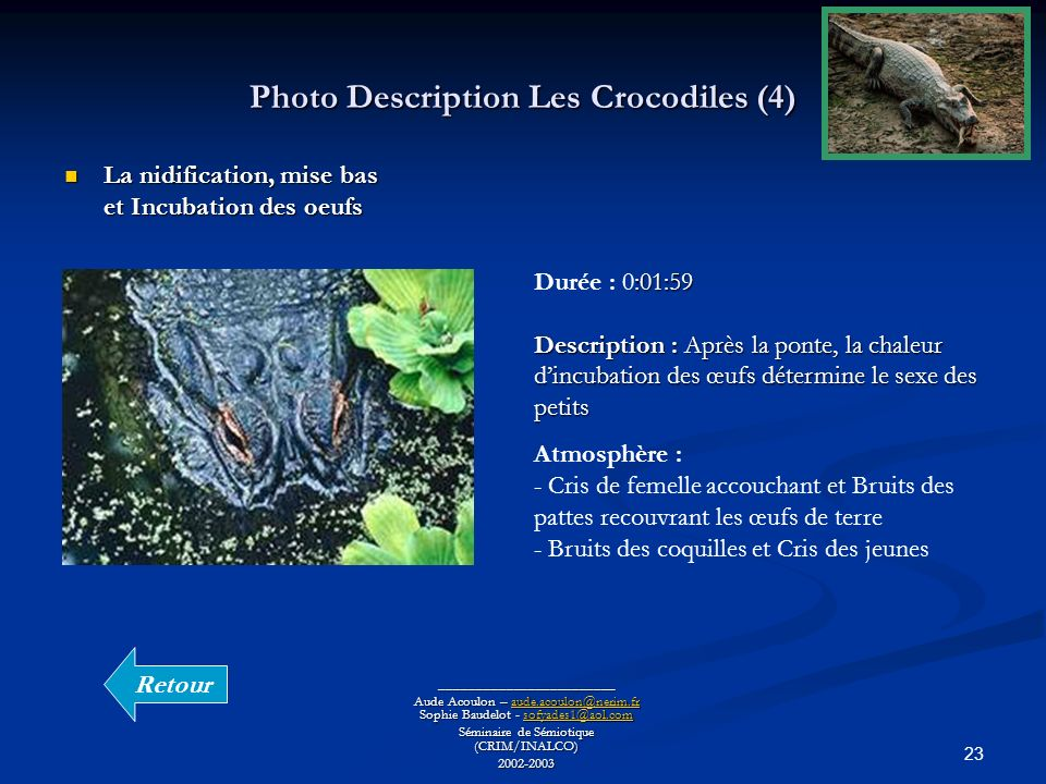 Photo Description Les Crocodiles (4)