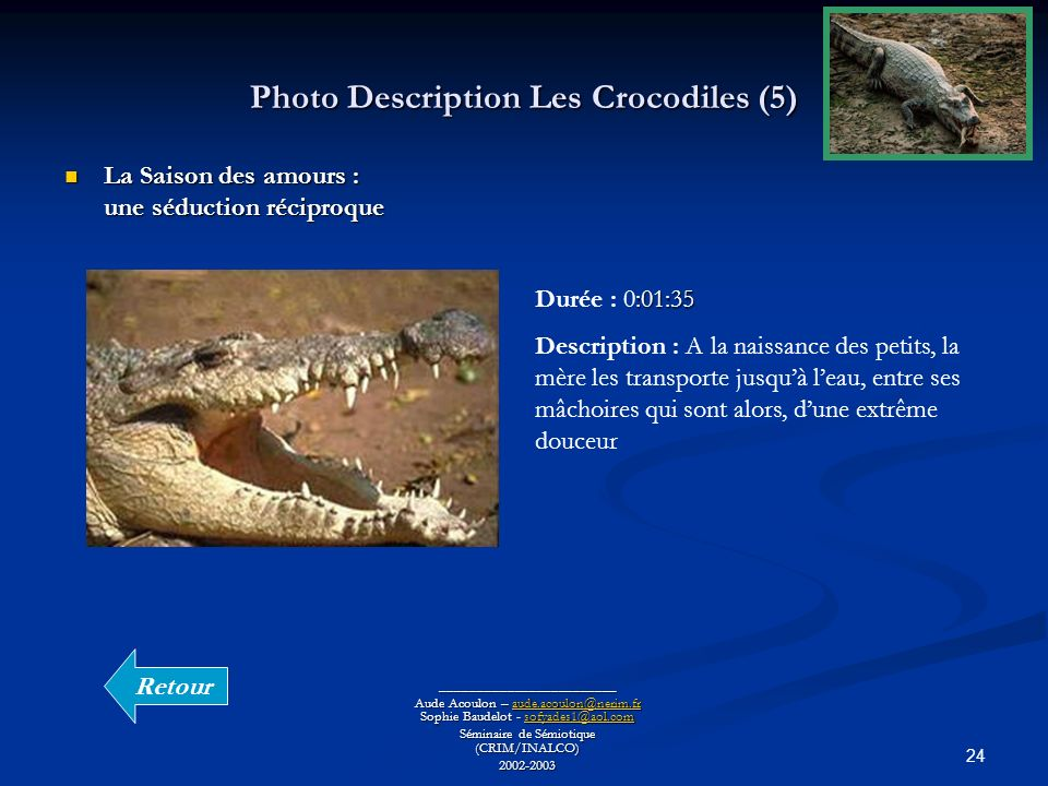 Photo Description Les Crocodiles (5)
