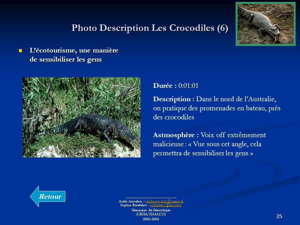 Photo Description Les Crocodiles (6)