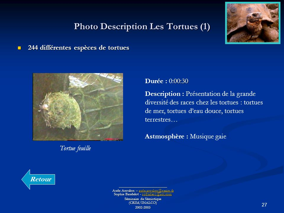 Photo Description Les Tortues (1)