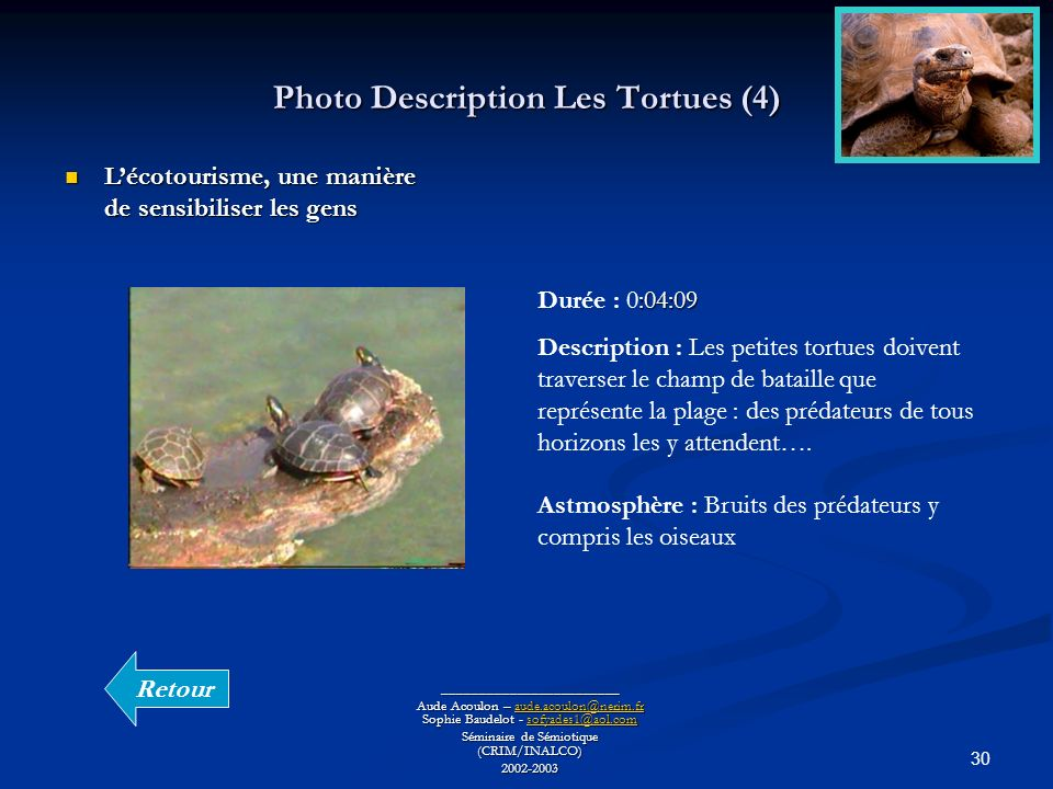 Photo Description Les Tortues (4)