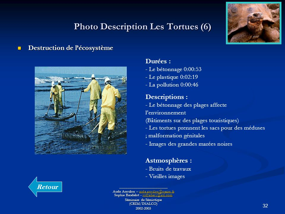 Photo Description Les Tortues (6)