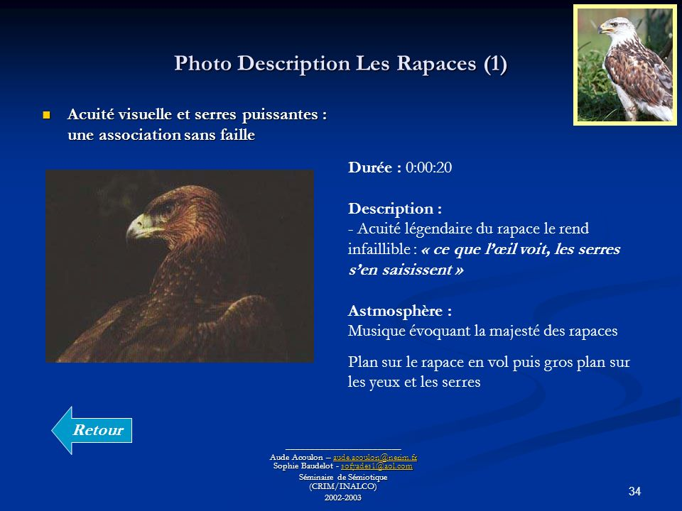 Photo Description Les Rapaces (1)