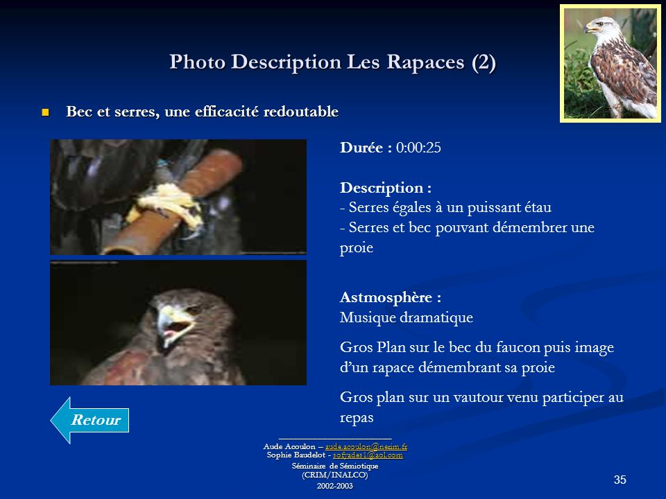 Photo Description Les Rapaces (2)